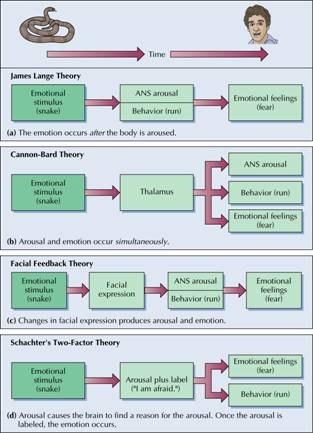 james-lange cannon-bard and schachter theories of emotion